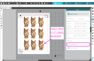 "Click on ""Trace Outer Edge"" to add a cut line outlining each image"